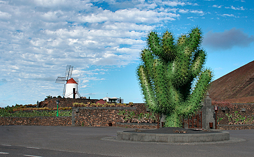 Ingang Jardin de Cactus